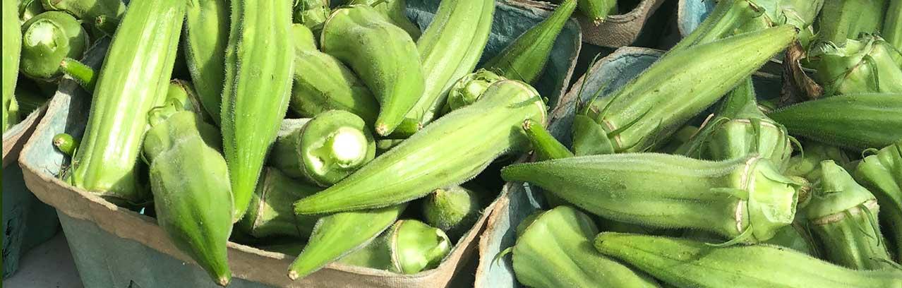 Starkville Community Farmer's Market
